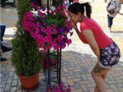 Matrimoniale bucuresti: Buna sunt noua in orasul tau nu ezita sa ma contactezi